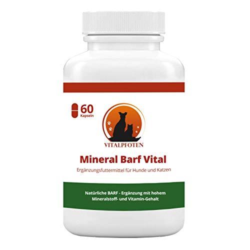 Unsere Empfehlung: Vitalpfoten Moringa Kapseln mit Weizengras für Hunde und Katzen