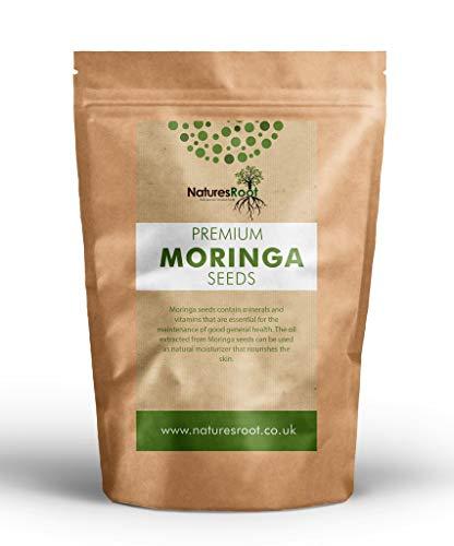 Natures Root Moringa Oleifera Samen 125 Stück - GVO-Frei   Essbare Samen   Groß und Keimfähig
