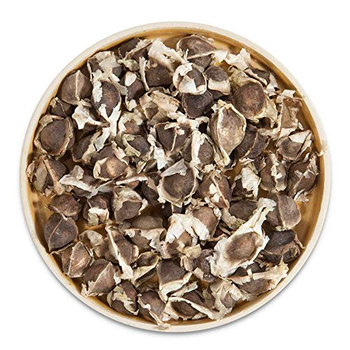Moringa Samen 28 g ca. 100 Stück groß und keimfähig - Moringa Pflanzen selber ziehen